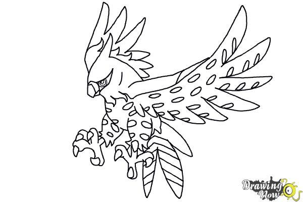 600x400 How To Draw Talonflame From Pokemon X And Y
