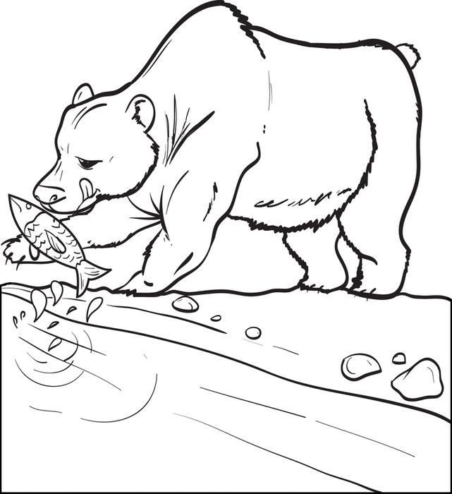 641x700 Drawn Polar Bear Fish Cartoon