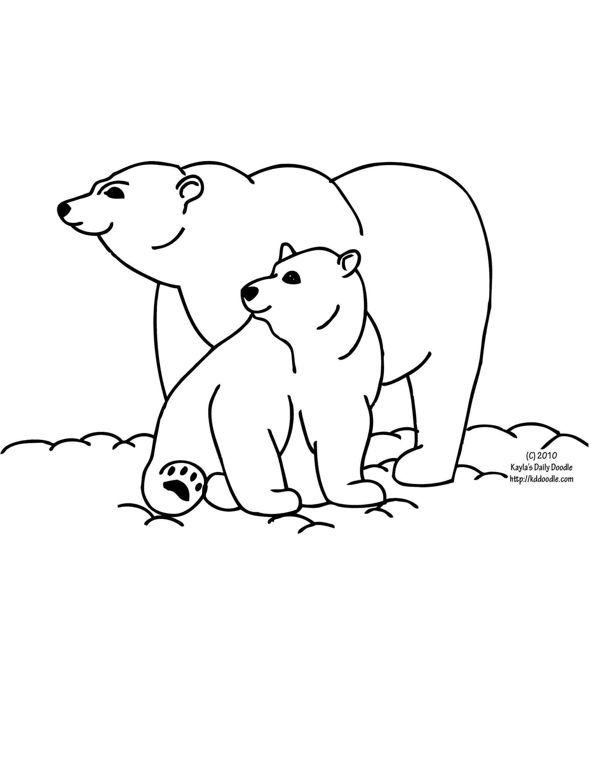 2014x2607 How To Draw A Polar Bear Face