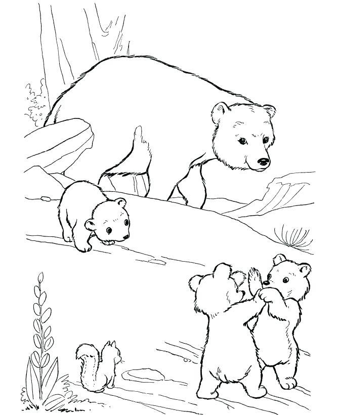 670x820 Polar Bear Color Page Affan