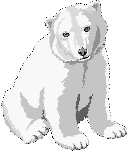 416x490 Polar Bear Cub