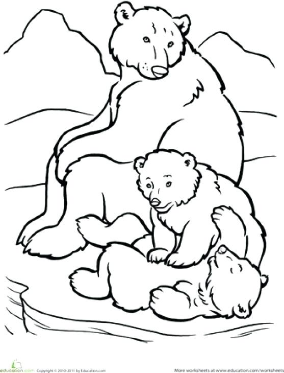 557x730 Cheap Polar Bear Coloring Pages Fee Printable Page From Bears