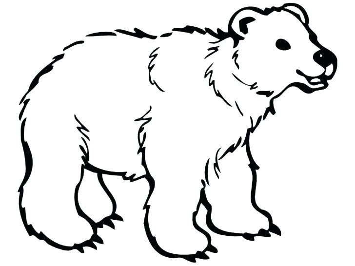 728x546 Polar Bear Coloring Page Coloring Pages Polar Bear Printable Polar