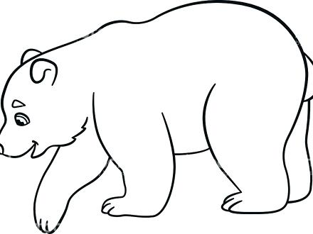 440x330 Polar Bear Coloring Pages Coloring Pages Little Cute Baby Polar