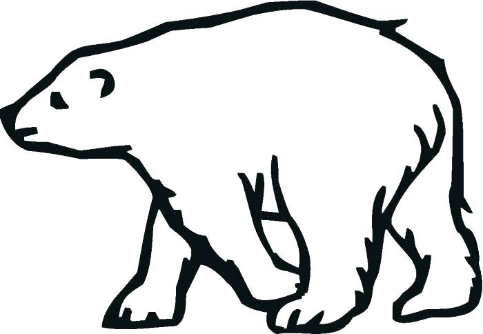 700x484 Polar Bears Coloring Page Coloring Trend Medium Size Mushroom