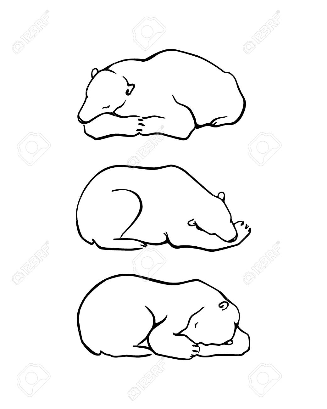 Polar Bear Cute Drawing At Getdrawingscom Free For