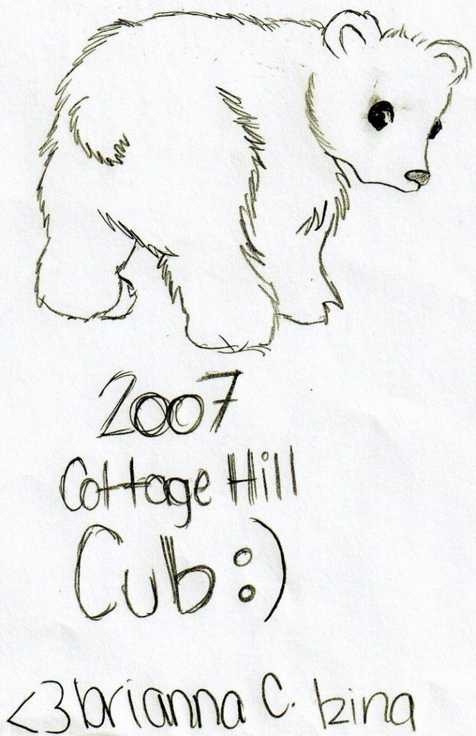 687x1061 Coloring Excellent Coloring Pages Of Polar Bears Book Bear