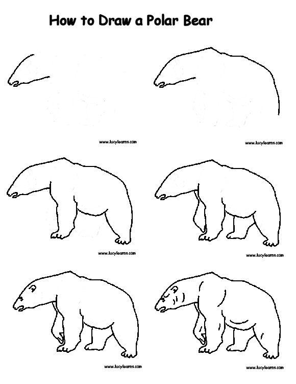 580x752 How To Draw A Polar Bear How To Draw Animals Polar