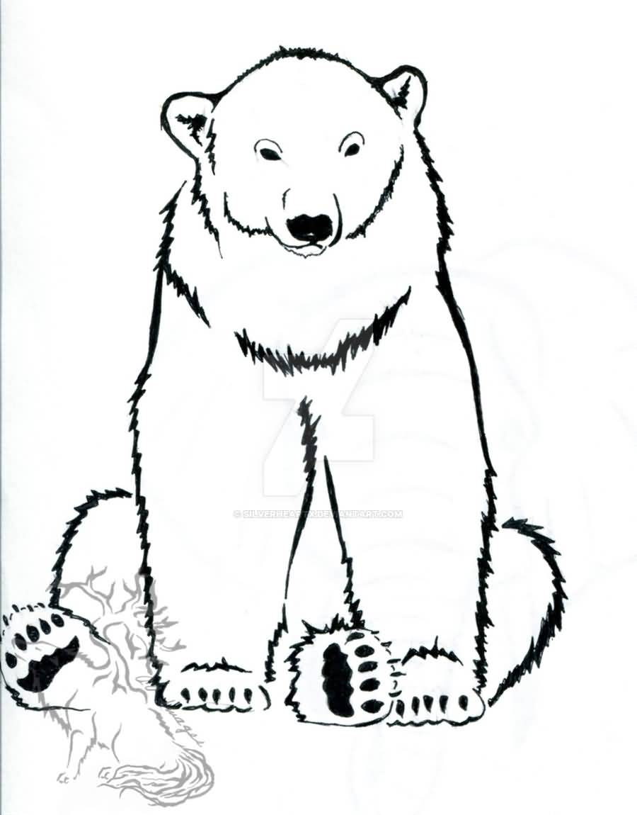 900x1150 Polar Bear Line Drawing Polar Bear Line Drawing Tattoo Design
