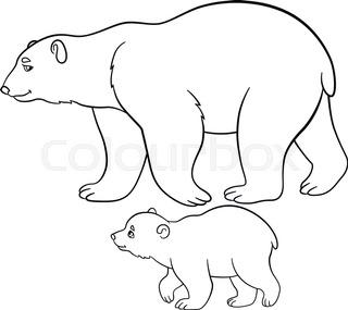 320x285 Polar Bear 1 Stock Vector Colourbox