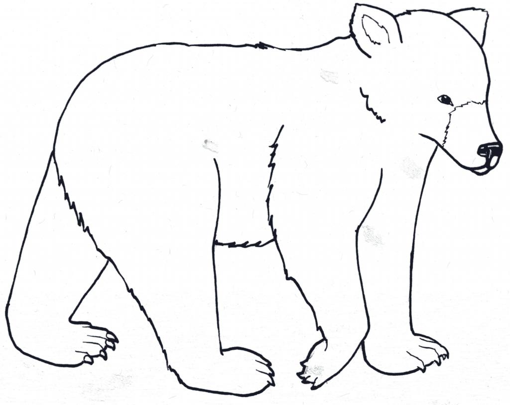 1024x812 Simple Bear Drawings