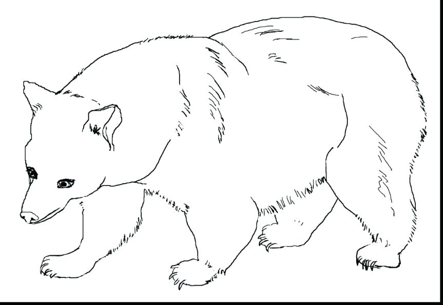 863x595 Polar Bear Coloring Pages For Preschoolers Baby Lovely Color Page