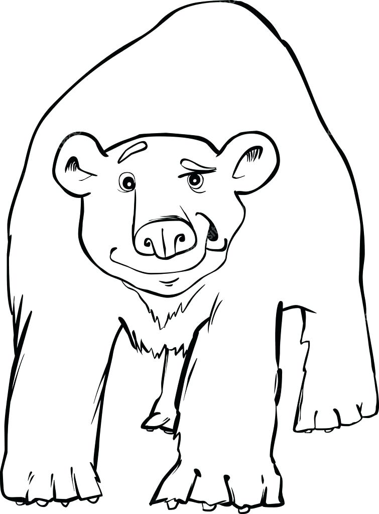 755x1023 Polar Bear Coloring Pictures Penguin Cute Polar Bear Coloring