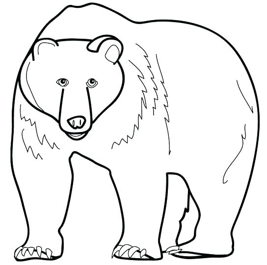 544x540 Black Bear Coloring Pages Black Bear Coloring Pages Kids Printable