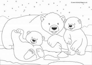 320x226 Polar Bears