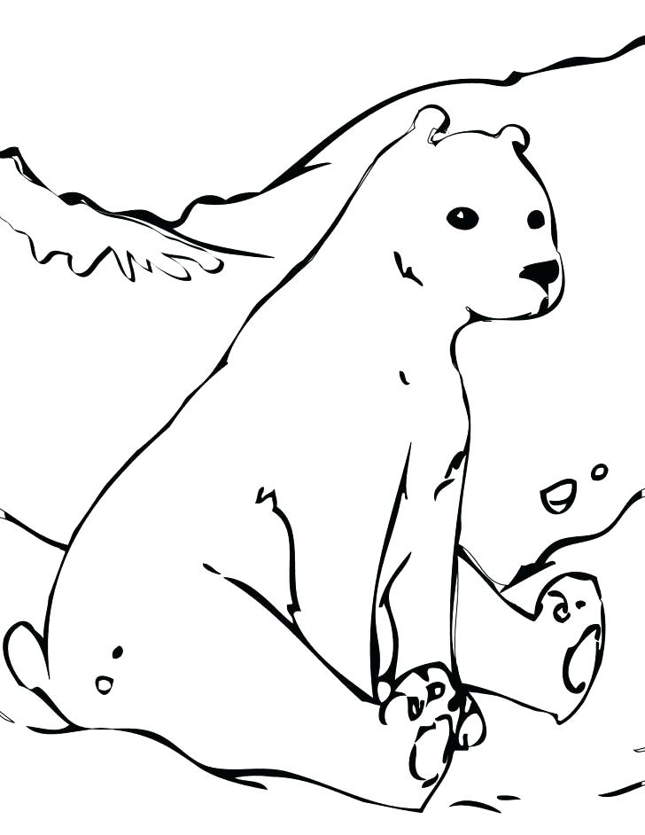 728x942 Coloring Pages Of Polar Bears Marvellous Polar Bear Coloring Pages