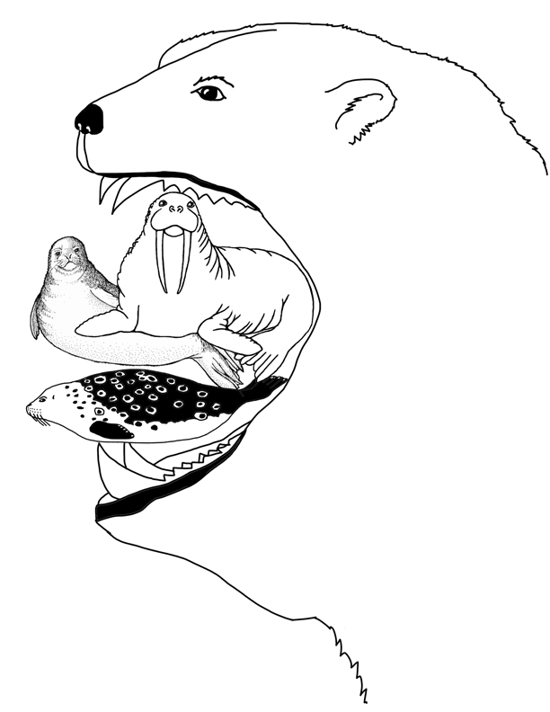 612x792 Do Polar Bears Eat Foldable Activity