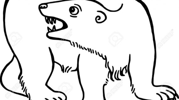 570x320 Simple Bear Drawing Simple Black And White Line Drawing Of A Polar