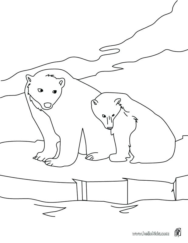 618x799 Coloring Pages Of Polar Bears Endangered Animals Coloring Pages