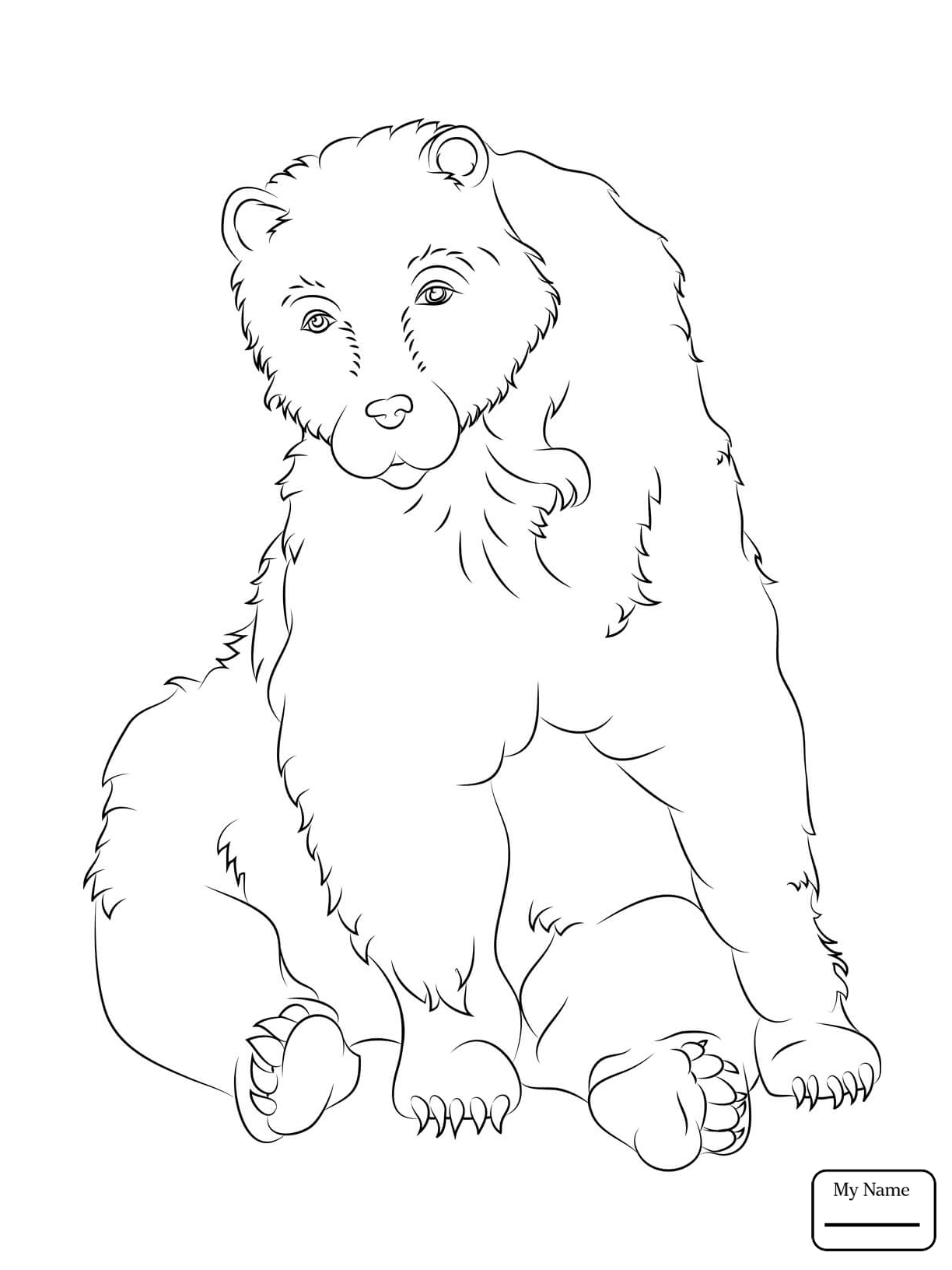 Polar Bear Outline Drawing at GetDrawings.com | Free for personal ...