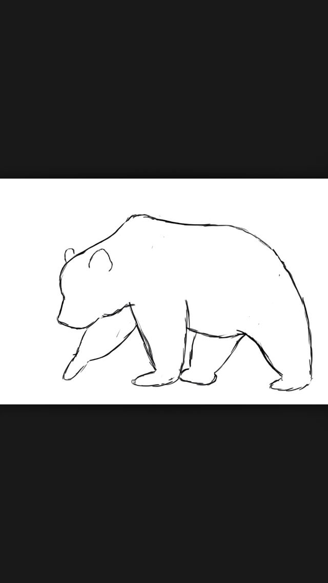 640x1136 How To Draw A Bear Bears And Tattoo