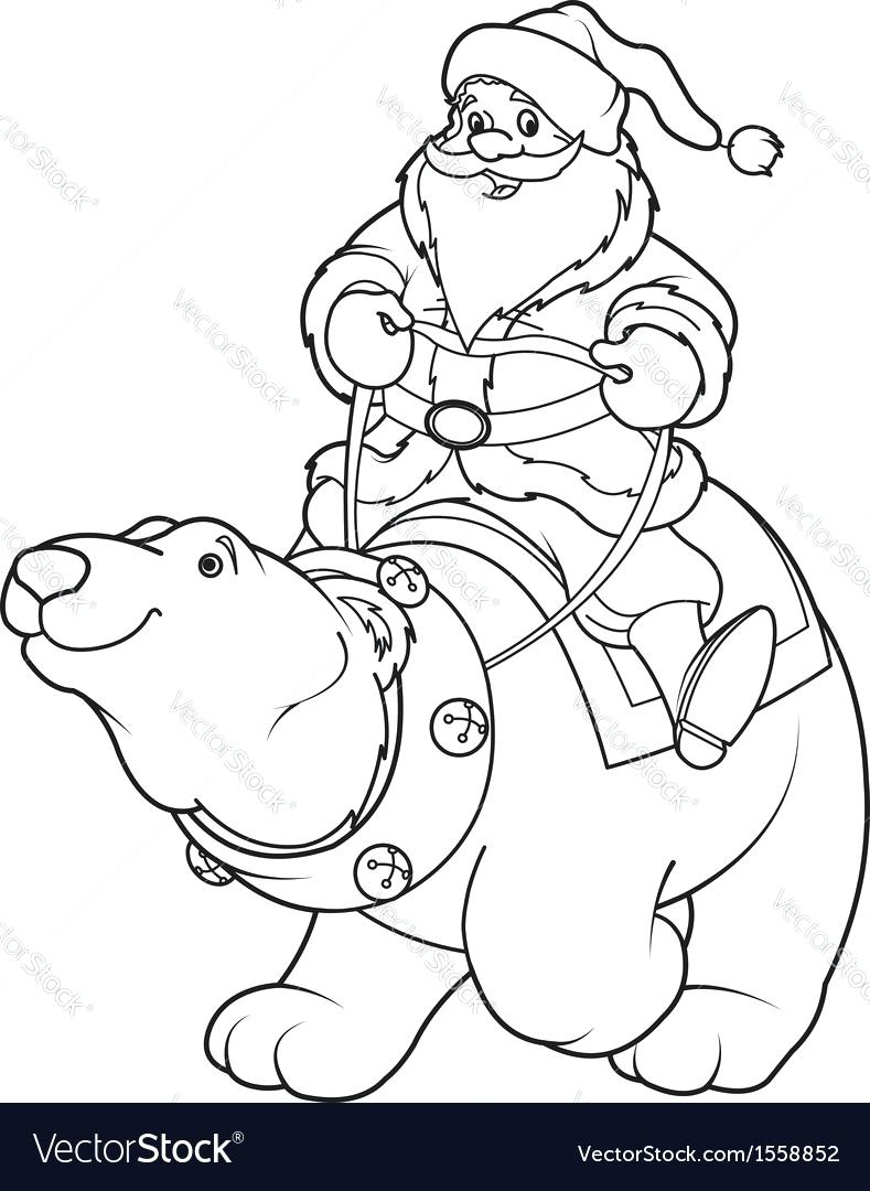 789x1080 Polar Bear Outline Drawing Bears Coloring Pages Free Printable