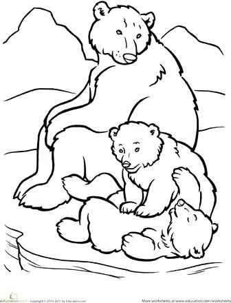 336x440 Top Rated Polar Bear Coloring Pages Images Polar Bear Coloring