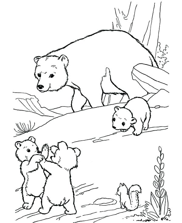 600x734 Polar Bears Coloring Pages Baby Polar Bear Coloring Pages Mother