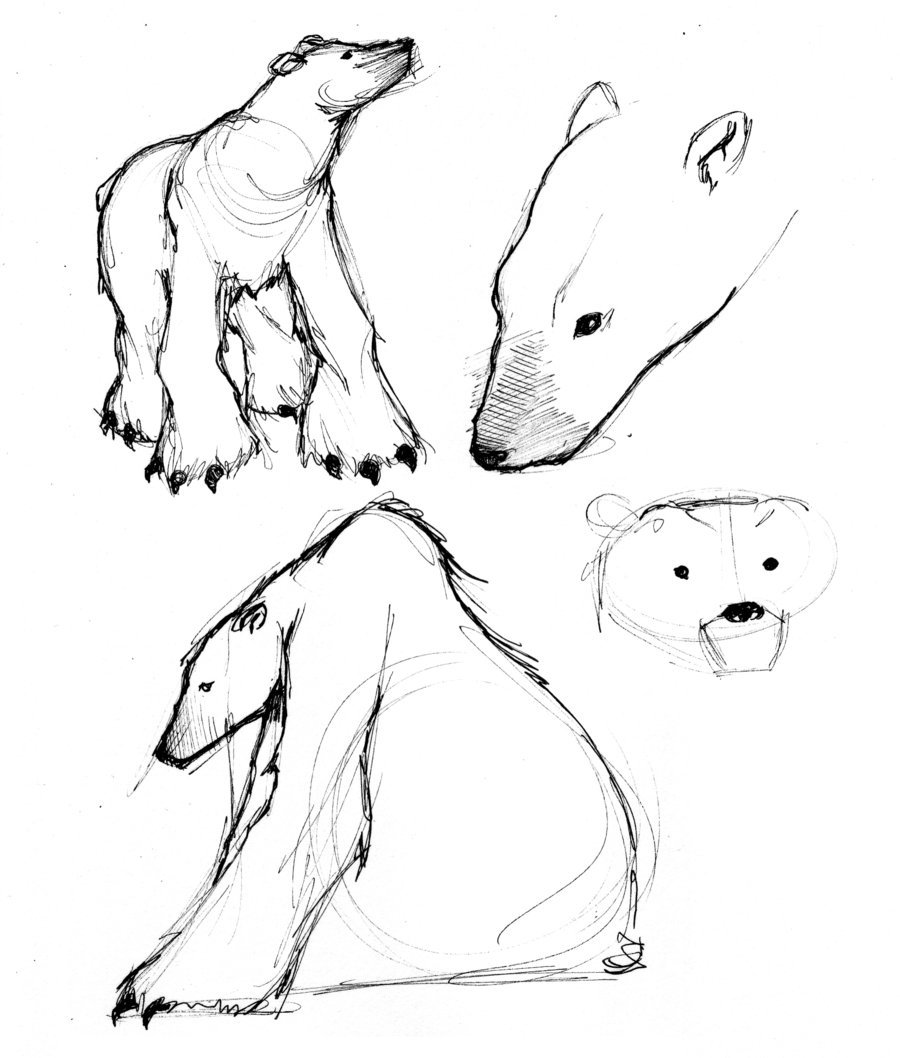 900x1058 Polar Bears By Jessicadru