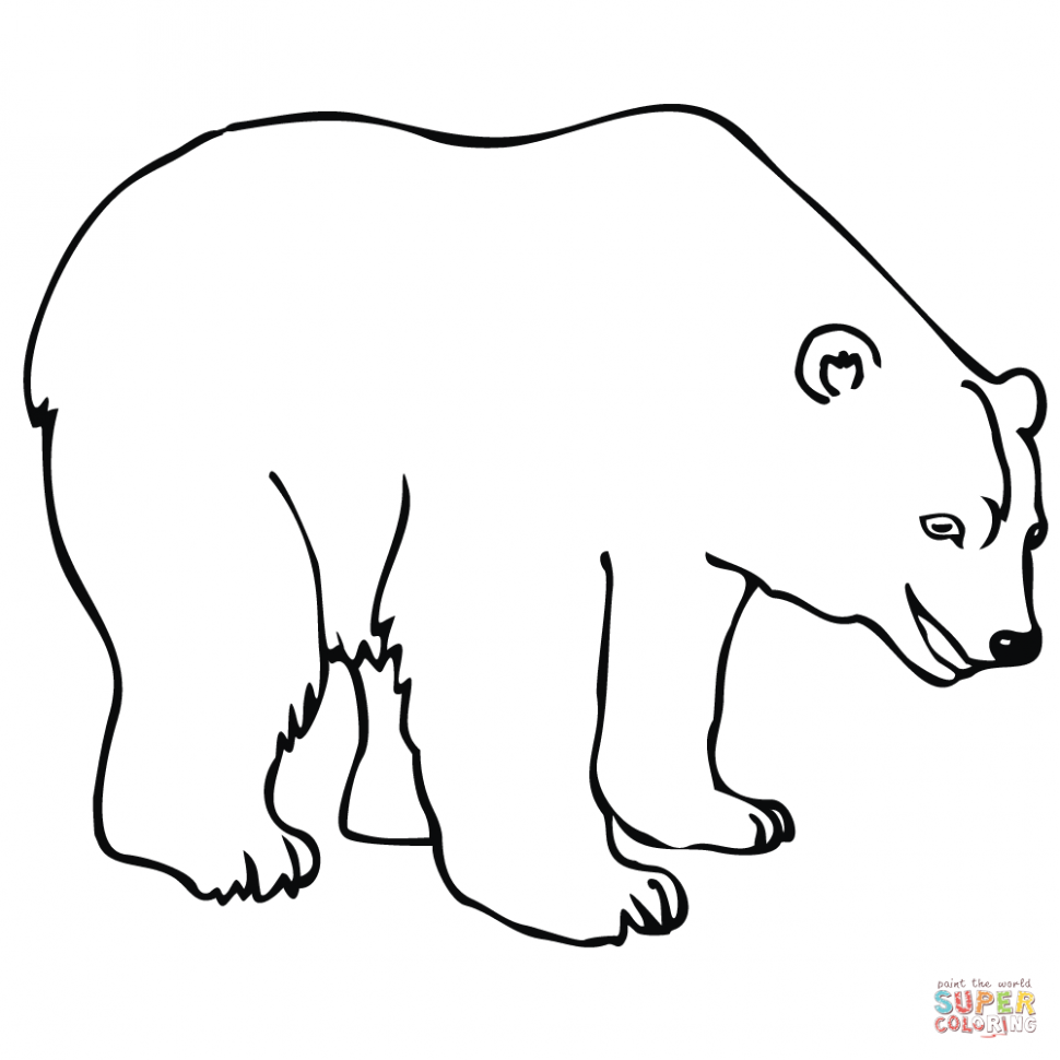 970x970 Coloring Coloring Book Polar Bear Page Free Printable Pages