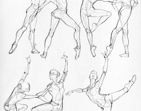 564x444 Hi Everyone! Here Are Some Anatomical Studies (Classic Dance, Hip