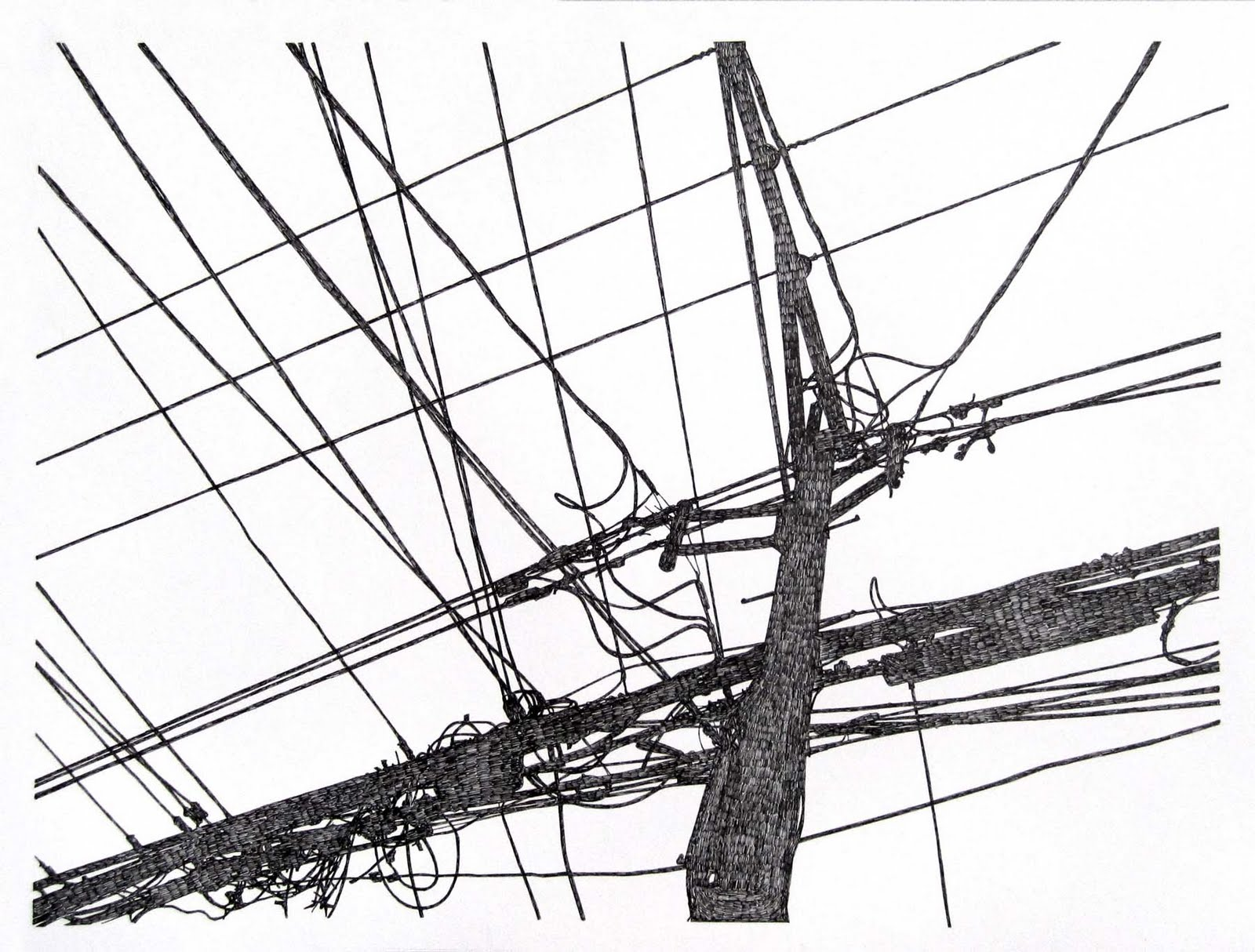 1600x1214 Michael Mcguire Telephone Pole Drawings