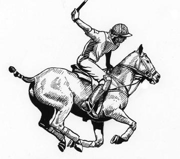 361x319 Basma Rashed Polo Pony