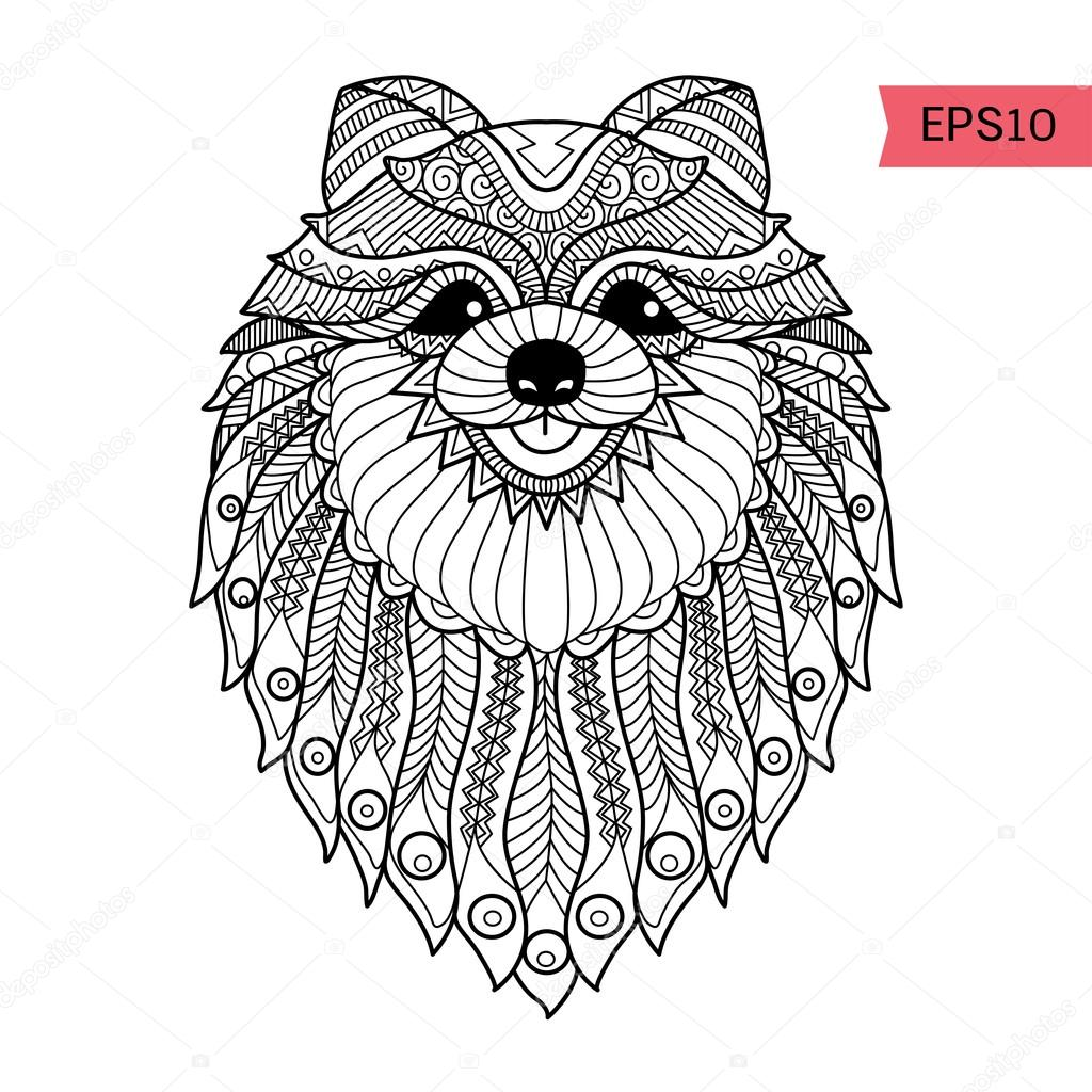 1024x1024 Hand Drawn Zentangle Pom Dog Background For Coloring Page Stock