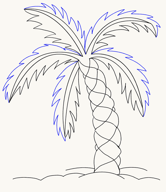 680x790 How Draw Palm Trees Step By Step Trees Pop Culture Free. How