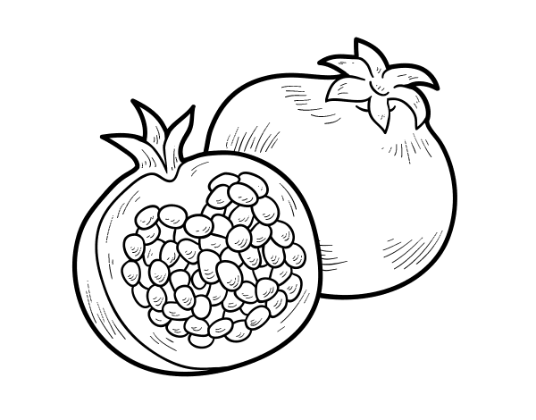 pomegranate images coloring pages for kids | Pomegranate Drawing at GetDrawings.com | Free for personal ...