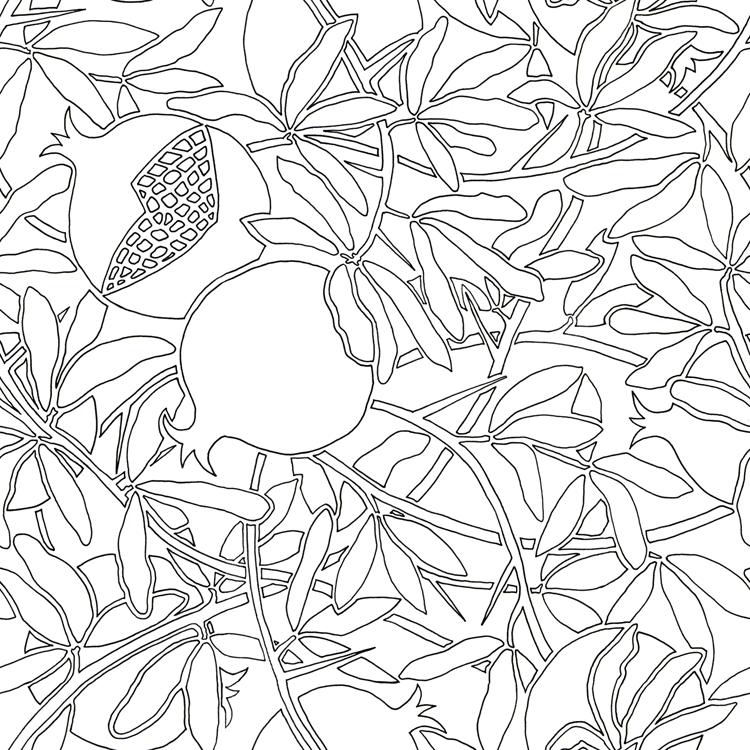 Pomegranate Tree Drawing At Getdrawings