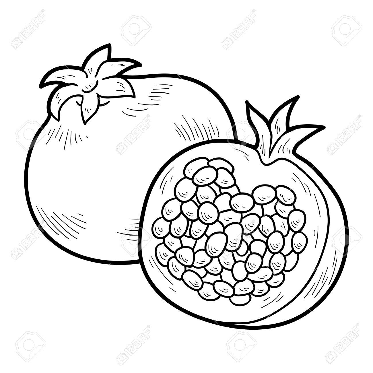 1300x1300 41938656 Libro Para Colorear Para Ni Os Frutas Y Verduras Granada