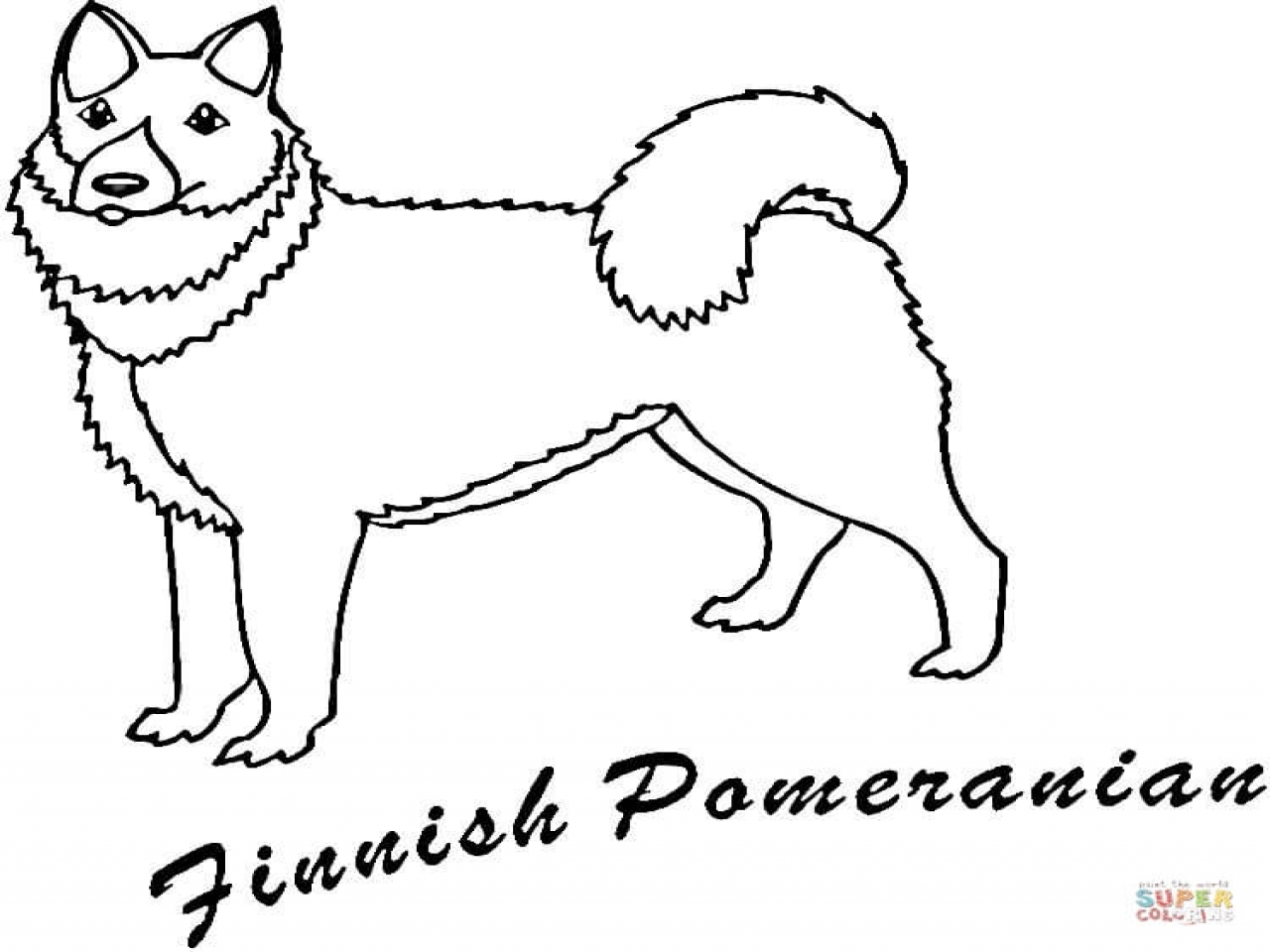 1280x960 Pomeranian Coloring Pages Finnish Page