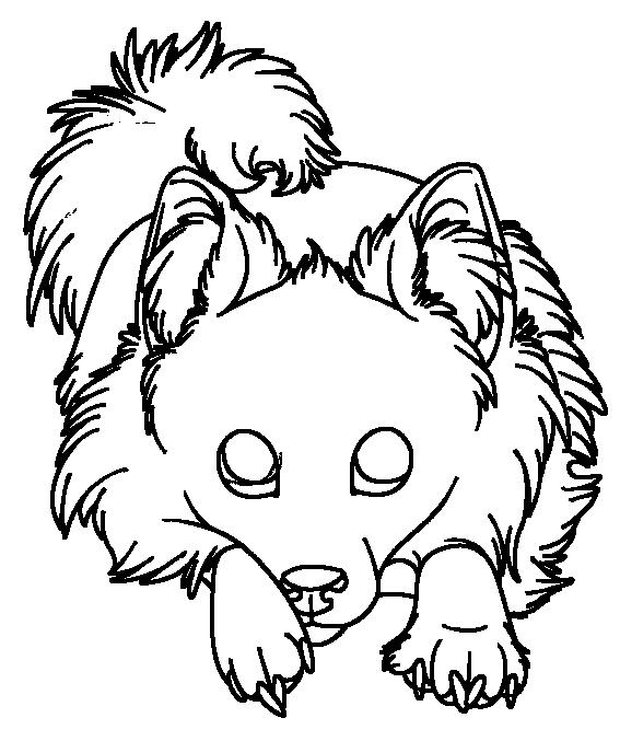 567x677 Pomeranian Lineart By Alaquor