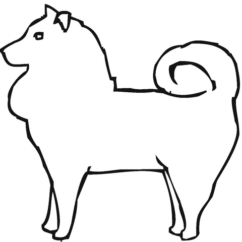 480x480 Pomeranian Coloring Page Free Printable Coloring Pages