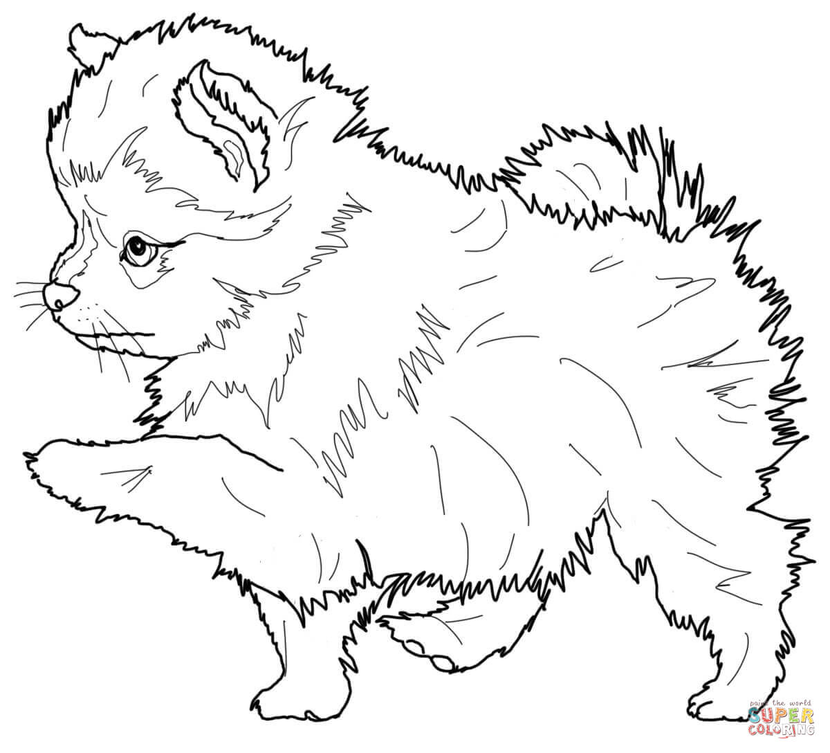 1200x1088 Pomeranian Puppy Coloring Page Free Printable Coloring Pages