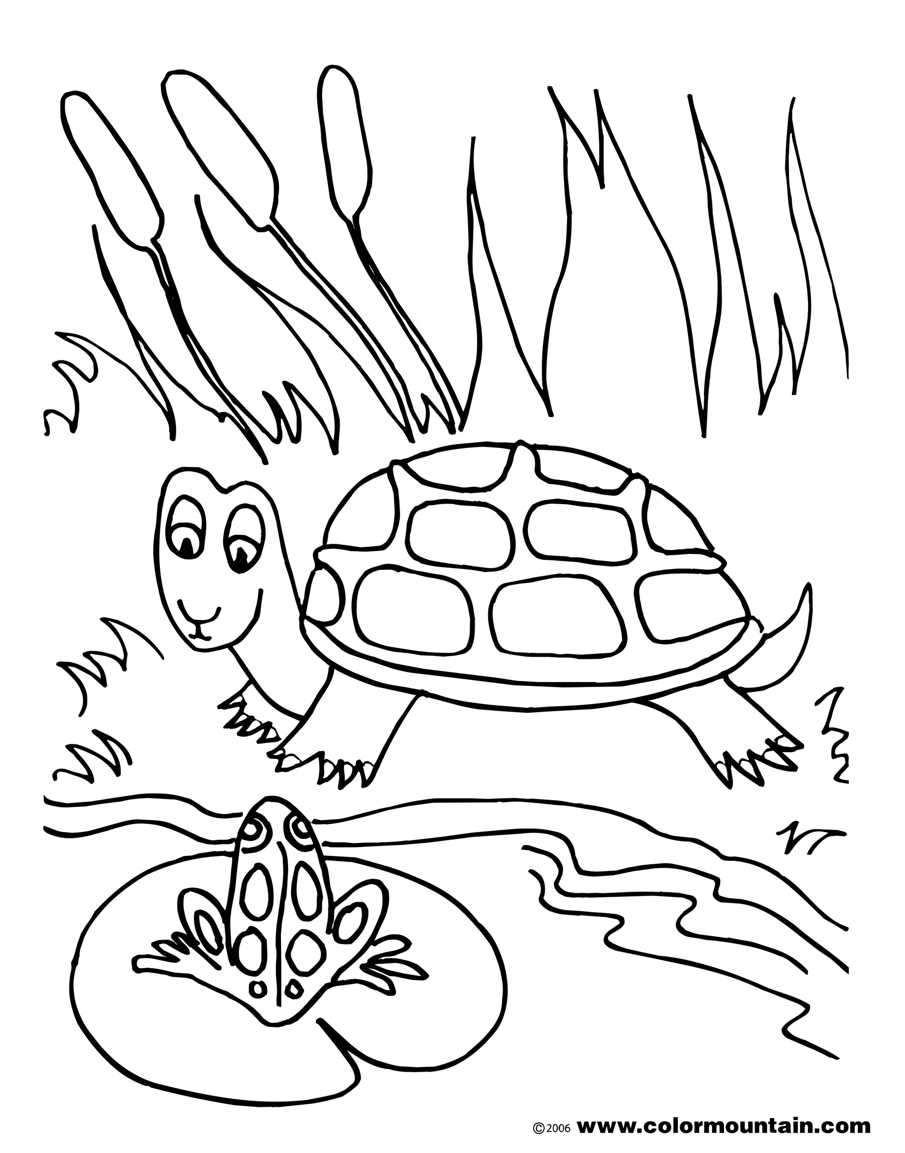 pond ecosystem coloring pages | Pond Drawing at GetDrawings | Free download