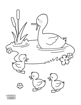 Pond Drawing at GetDrawings.com | Free for personal use Pond Drawing ...