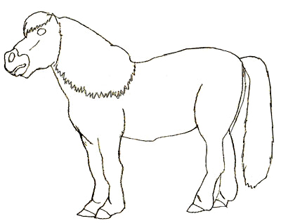 400x318 How To Draw A Pony Step By Step Drawings For Kids