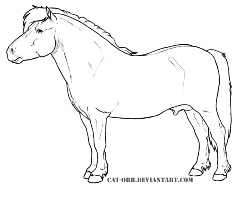 480x404 Shetland Pony Coloring Page Free Printable Coloring Pages