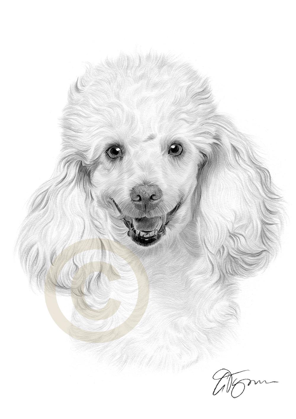 1000x1415 Gary Tymon's Blog Pencil Drawings, Oil And Acrylic Paintings