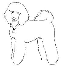 217x232 How To Draw A Poodle Fun Drawing Lessons For Kids Amp Adults Je