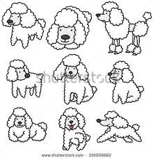 220x229 Image Result For Poodle Drawing Poodles Search