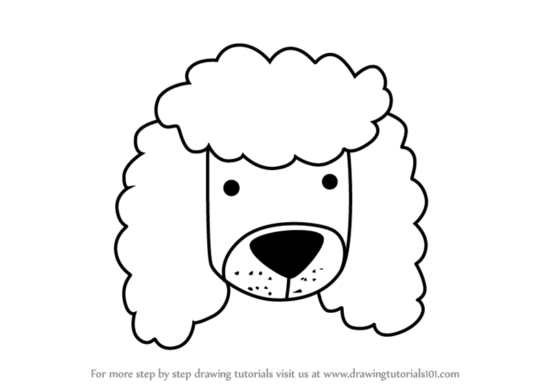 800x567 Learn How To Draw A Poodle Dog Face Kids (Animal Faces